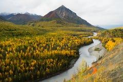Matanuska-Fluss-Flüsse utumn Jahreszeit-Fall-Farbe Alaska lizenzfreies stockbild