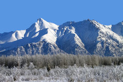 Matanuska Peak Royalty Free Stock Photo