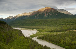 The Matanuska River cuts Through Woods at Chugach Mountains Base royalty free stock photo