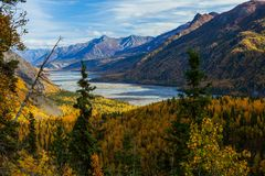 Matanuska River Valley royalty free stock photos