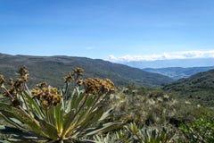 Matarredonda-Park in Cundinamarca, Kolumbien Lizenzfreies Stockfoto