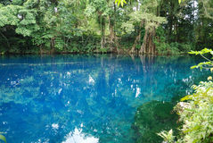 Matavulu Blue Hole Royalty Free Stock Photo