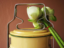 Matbärare och lotusblomma arkivfoto