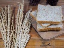 Matbakgrund eller textur arkivbilder