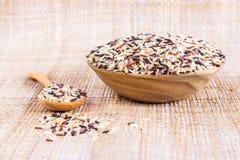 Matbakgrund med av variation för fem ris risblandning medf8ort fotografering för bildbyråer