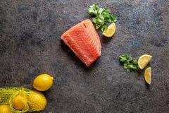 Matbakgrund med den nya laxfiletbiff, citronen och koriander royaltyfria bilder