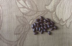 Matbildslutet upp godisen, choklad mjölkar, extra mörka mandelmuttrar Texturera överst siktsbakgrund royaltyfria foton
