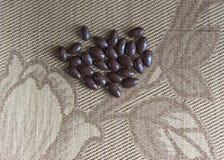 Matbildslutet upp godisen, choklad mjölkar, extra mörka mandelmuttrar Texturera överst siktsbakgrund royaltyfria bilder