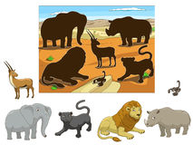 Match the  animals to their shadows child game Royalty Free Stock Photography