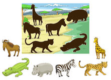 Match animals to their shadows educational game Royalty Free Stock Photos