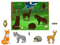 Match the animals to their shadows Royalty Free Stock Images
