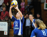 Match de volley de Kaposvar-Miskolc Photo stock