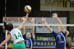 Match de volley de Kaposvar-Miskolc Photo libre de droits