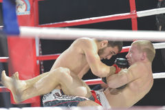 Match in mixed martial arts Royalty Free Stock Image