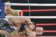 Match in mixed martial arts Stock Photography
