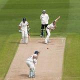 Match professionnel de cricket image libre de droits