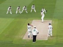 Match professionnel de cricket photos libres de droits