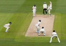 Match professionnel de cricket images stock