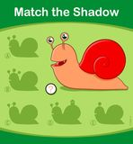 Match the Shadow kids puzzle game with cute snail Stock Photos