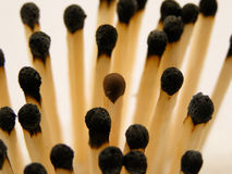Match sticks. Some match sticks photographed at the center is unburned Royalty Free Stock Images