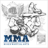 Match two fighters of martial mixed arts. Royalty Free Stock Photos