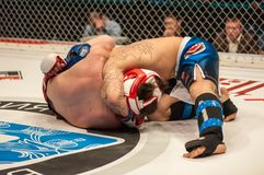 Match two MMA fighters Royalty Free Stock Images