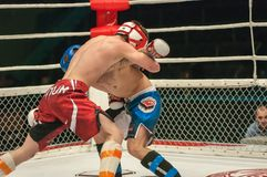 Match two MMA fighters Stock Image