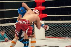 Match two MMA fighters Royalty Free Stock Image