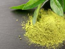 Matcha Органическая зеленая церемония чая matcha Порошок Matcha Vegeta Стоковые Фотографии RF