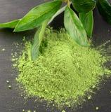 Matcha Органическая зеленая церемония чая matcha Порошок Matcha Vegeta Стоковое фото RF