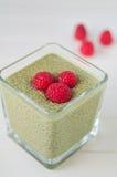 Matcha Chia Seeds Pudding com framboesa foto de stock