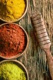 Matcha, chili- och currykryddor Arkivfoton