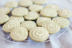 Matcha cookies Stock Photography