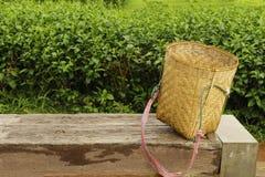 Matcha green tea picker bags or basket on big log. Stock Photo