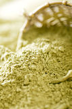 Matcha green tea powder Royalty Free Stock Image