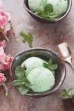 Matcha Ice Cream Stock Images