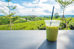 Matcha iced green tea in clear plastic glass on table with tea plantation background at Choui Fong Chiang Rai province, Thailand. Copy space royalty free stock image