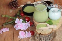 Matcha zielona herbata i zielona herbata proszek Obraz Stock