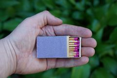 Matchboxes in open palms on background of green leaves Royalty Free Stock Photos