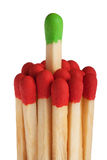 Matches - green leadership concept Stock Images