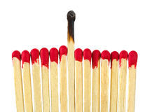 Matches - leadership or inspiration concept royalty free stock image