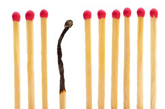 Matches on a row with one burned Stock Image