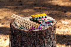 Matches trees forest. Matches are on a stump in the forest trees and matches deforestation different types of matches Royalty Free Stock Images