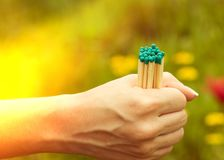 Matches in the women`s hand with a light, close-up royalty free stock photo
