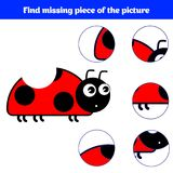 Matching children educational game. Match insects parts. Find missing puzzle. Activity for pre school years kids.  Stock Photos