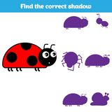 Matching children educational game. Match insects parts. Find missing puzzle. Activity for pre school years kids.  Stock Photo