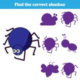 Matching children educational game. Match insects parts. Find missing puzzle. Activity for pre school years kids.  Royalty Free Stock Photos
