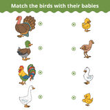 Matching game for children, farm birds and babies Royalty Free Stock Photography