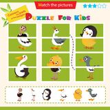 Matching game for children. Puzzle for kids. Match the right parts of the images. Ostrich, stork, chick, gosling, penguin, pelican