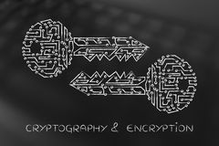 Matching keys made of electronic circuits, encryption & cryptogr Stock Photo